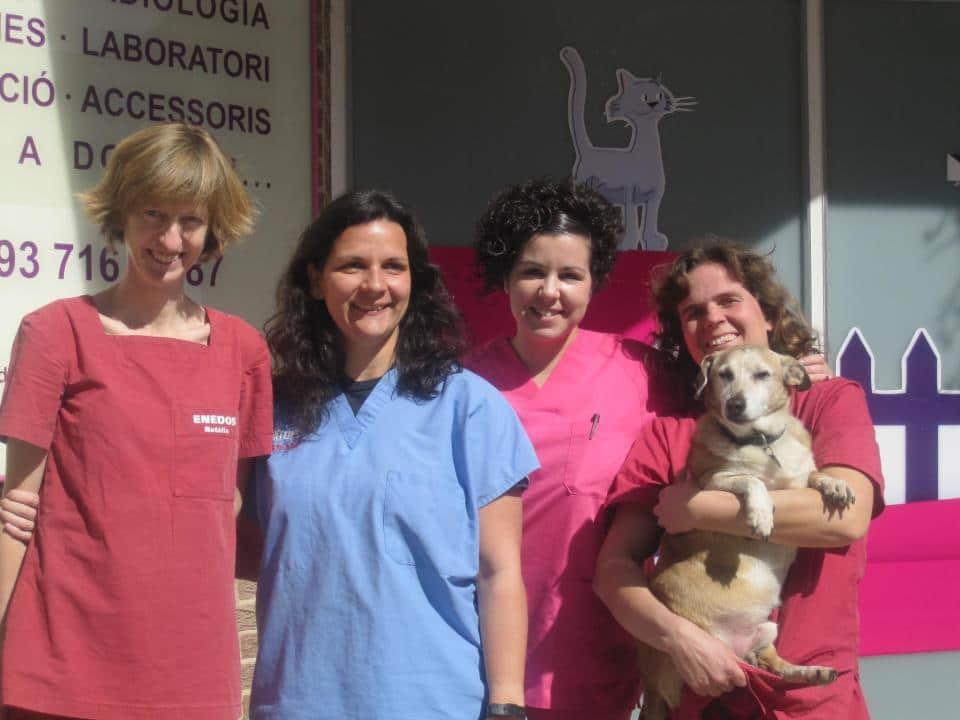 Equipo de Clinica veterinaria Enedos