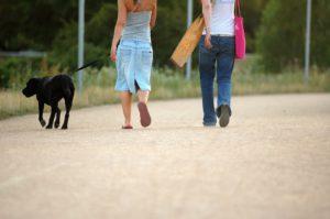 Cuidar o pasear mascotas